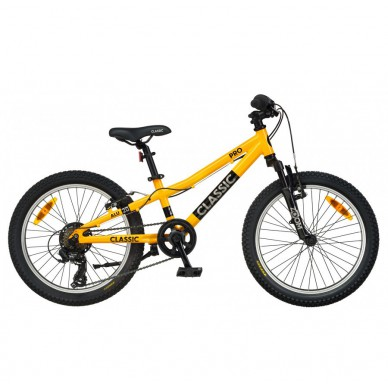 Classic PRO 20 dviratis 2021